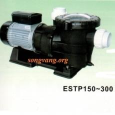 Model ESTP-300