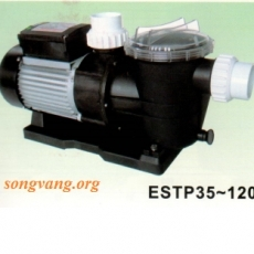 Model ESTP-120