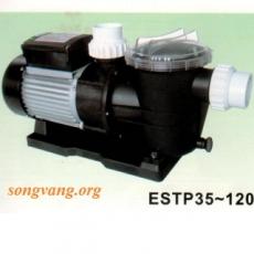 Model ESTP-75